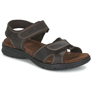 kengät Miehet Sandaalit ja avokkaat Panama Jack SANDERS Brown