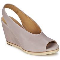 kengät Naiset Sandaalit ja avokkaat Coclico NELS Violet / Clair