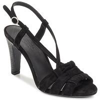 kengät Naiset Sandaalit ja avokkaat n.d.c. SOFIA Black