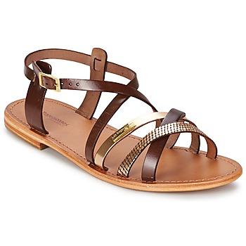 kengät Naiset Sandaalit ja avokkaat Les Tropéziennes par M Belarbi HAPAX Brown / DORE