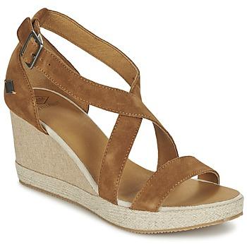 kengät Naiset Sandaalit ja avokkaat PLDM by Palladium WELLTON Brown