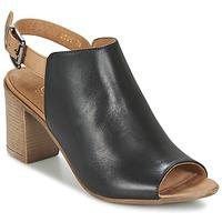 kengät Naiset Sandaalit ja avokkaat Casual Attitude SERIN Black