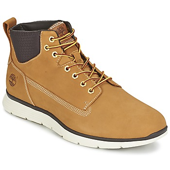 kengät Miehet Bootsit Timberland KILLINGTON CHUKKA WHEAT Red multi wf sde