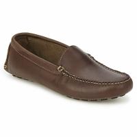 kengät Miehet Mokkasiinit Sebago LIMEROCK Espresso