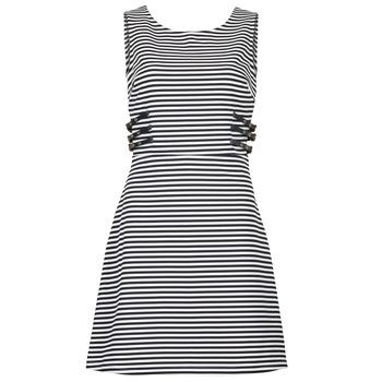 vaatteet Naiset Lyhyt mekko Morgan RMARI Laivastonsininen / ECRU