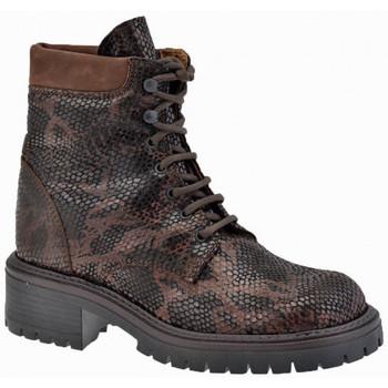 kengät Pojat Bootsit La Romagnoli  Ruskea