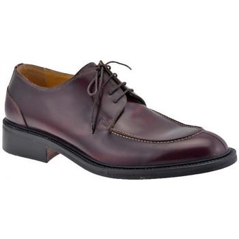 kengät Miehet Herrainkengät Lancio  Ruskea