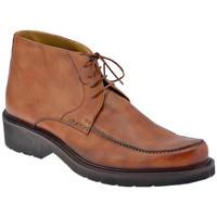 kengät Miehet Bootsit Lancio  Ruskea