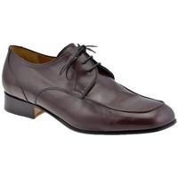 kengät Miehet Derby-kengät Lancio  Ruskea