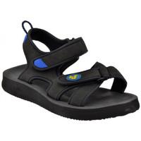 kengät Lapset Sandaalit ja avokkaat Lumberjack  Musta
