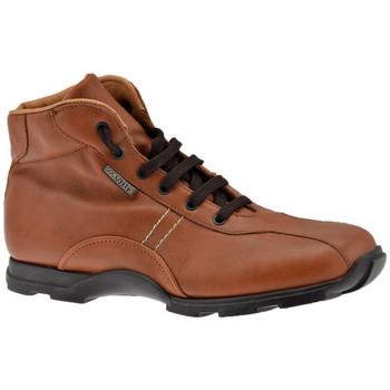 kengät Miehet Vaelluskengät Docksteps  Ruskea