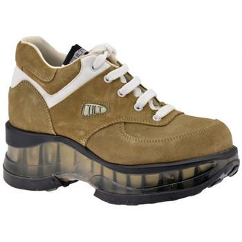 kengät Naiset Vaelluskengät Cult  Beige