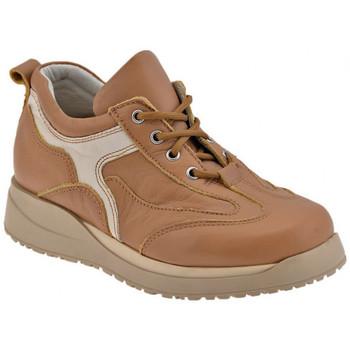 kengät Pojat Derby-kengät Chicco  Ruskea