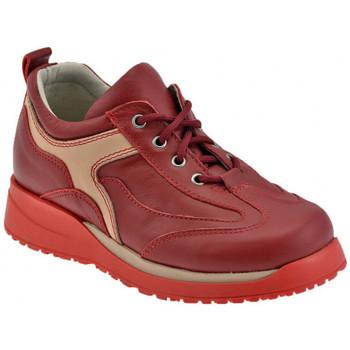kengät Lapset Korkeavartiset tennarit Chicco  Punainen
