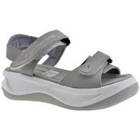 kengät Lapset Sandaalit ja avokkaat Fornarina  Harmaa