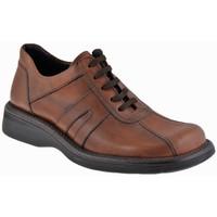 kengät Miehet Bootsit Nicola Barbato  Beige