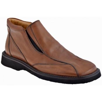 kengät Miehet Mokkasiinit Nicola Barbato  Ruskea