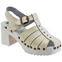 kengät Naiset Sandaalit ja avokkaat Magica Estate  Valkoinen