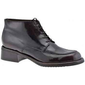 kengät Naiset Bootsit Dockmasters  Monivärinen
