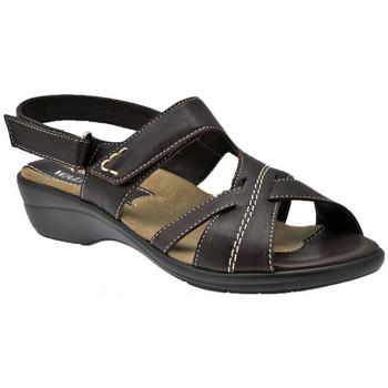 kengät Naiset Sandaalit ja avokkaat Susimoda  Monivärinen