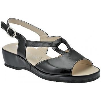 kengät Naiset Sandaalit ja avokkaat Susimoda  Musta