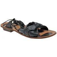kengät Naiset Sandaalit ja avokkaat Progetto  Musta