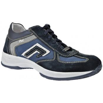 kengät Miehet Korkeavartiset tennarit Zen  Sininen