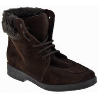 kengät Naiset Talvisaappaat Valleverde  Ruskea
