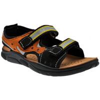 kengät Pojat Sandaalit ja avokkaat Inblu  Musta