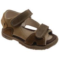 kengät Pojat Sandaalit ja avokkaat Inblu  Ruskea