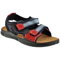 kengät Pojat Sandaalit ja avokkaat Inblu  Sininen