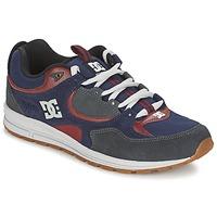 kengät Miehet Skeittikengät DC Shoes KALIS LITE Laivastonsininen / Grey