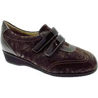 kengät Naiset Matalavartiset tennarit Calzaturificio Loren LOL8050m marrone