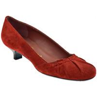 kengät Naiset Korkokengät Bocci 1926  Punainen