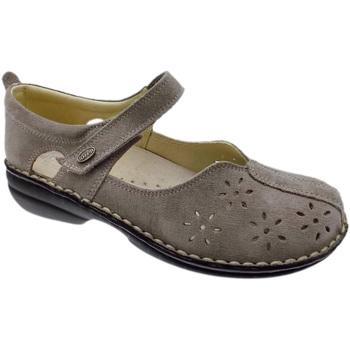 kengät Naiset Balleriinat Calzaturificio Loren LOM2313ta tortora