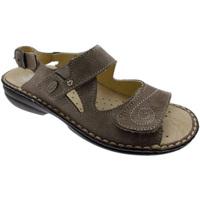 kengät Naiset Sandaalit ja avokkaat Calzaturificio Loren LOM2595ta tortora