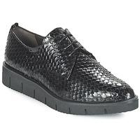 kengät Naiset Derby-kengät Perlato MEQUINI Musta