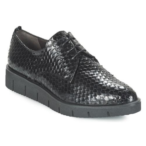 kengät Naiset Derby-kengät Perlato MEQUINI Black