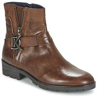 kengät Naiset Bootsit Dorking NALA Brown