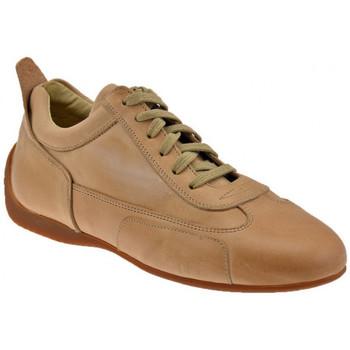 kengät Miehet Matalavartiset tennarit Bocci 1926  Beige