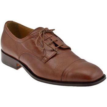 kengät Miehet Herrainkengät Bocci 1926  Ruskea