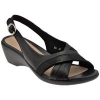 kengät Naiset Korkokengät Stonefly  Musta