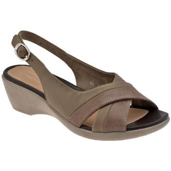 kengät Naiset Korkokengät Stonefly  Monivärinen