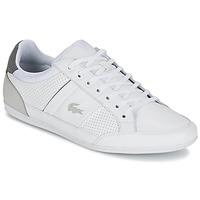 kengät Miehet Matalavartiset tennarit Lacoste CHAYMON 316 1 White / Grey