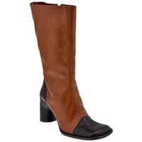kengät Naiset Saappaat Bocci 1926  Ruskea