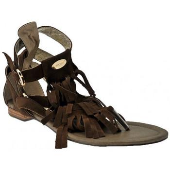kengät Naiset Sandaalit ja avokkaat Swish  Ruskea