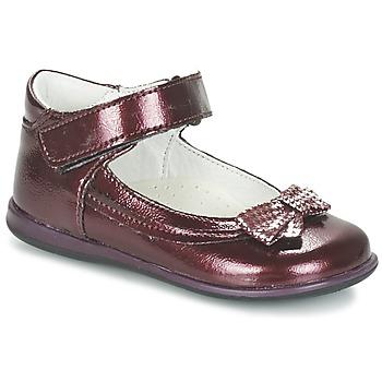 kengät Tytöt Balleriinat Citrouille et Compagnie FRIZZY BORDEAUX