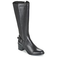 kengät Naiset Saappaat Betty London FAJIJE Black