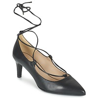 kengät Naiset Korkokengät Betty London FIAJI Black
