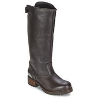 kengät Naiset Saappaat Love Moschino JA26094 Black